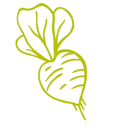 Pozadí Tuňák ve slunečnicovém oleji schilli